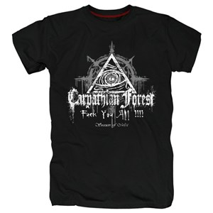 Carpathian forest #3
