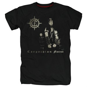Carpathian forest #9
