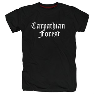 Carpathian forest #11