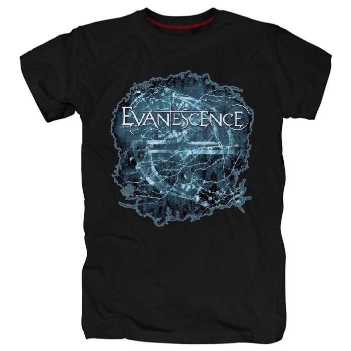 Evanescence #2 - фото 69879